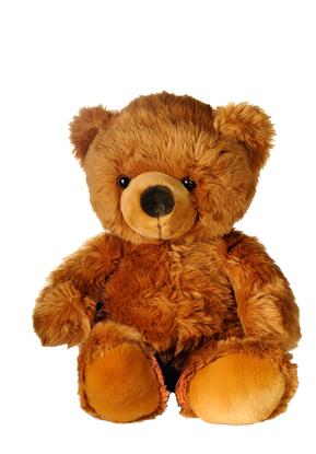 Send a teddy bear to Ukraine
