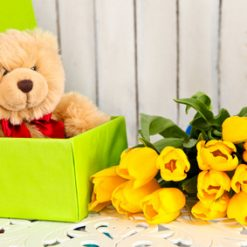 tulips and teddy